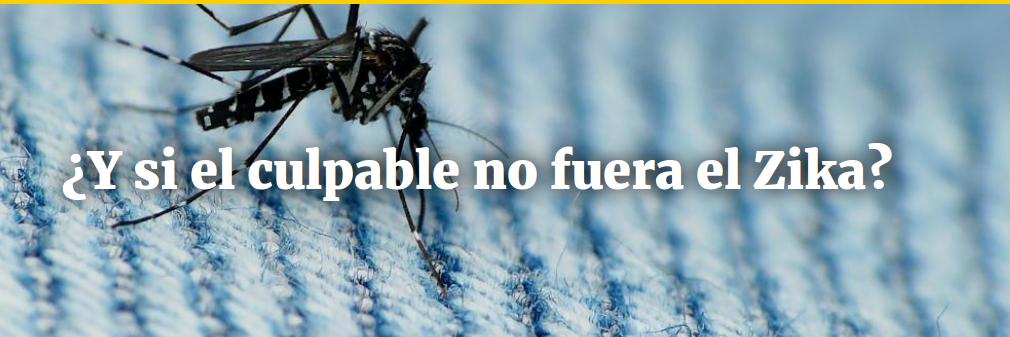 ¿Y si el culpable no fuera el Zika?