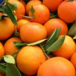 mandarina-clemenvilla