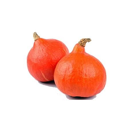 Verduras de Pedro: Calabaza Poti Marrón a 2,2 €/kg. Indicar número de kilos